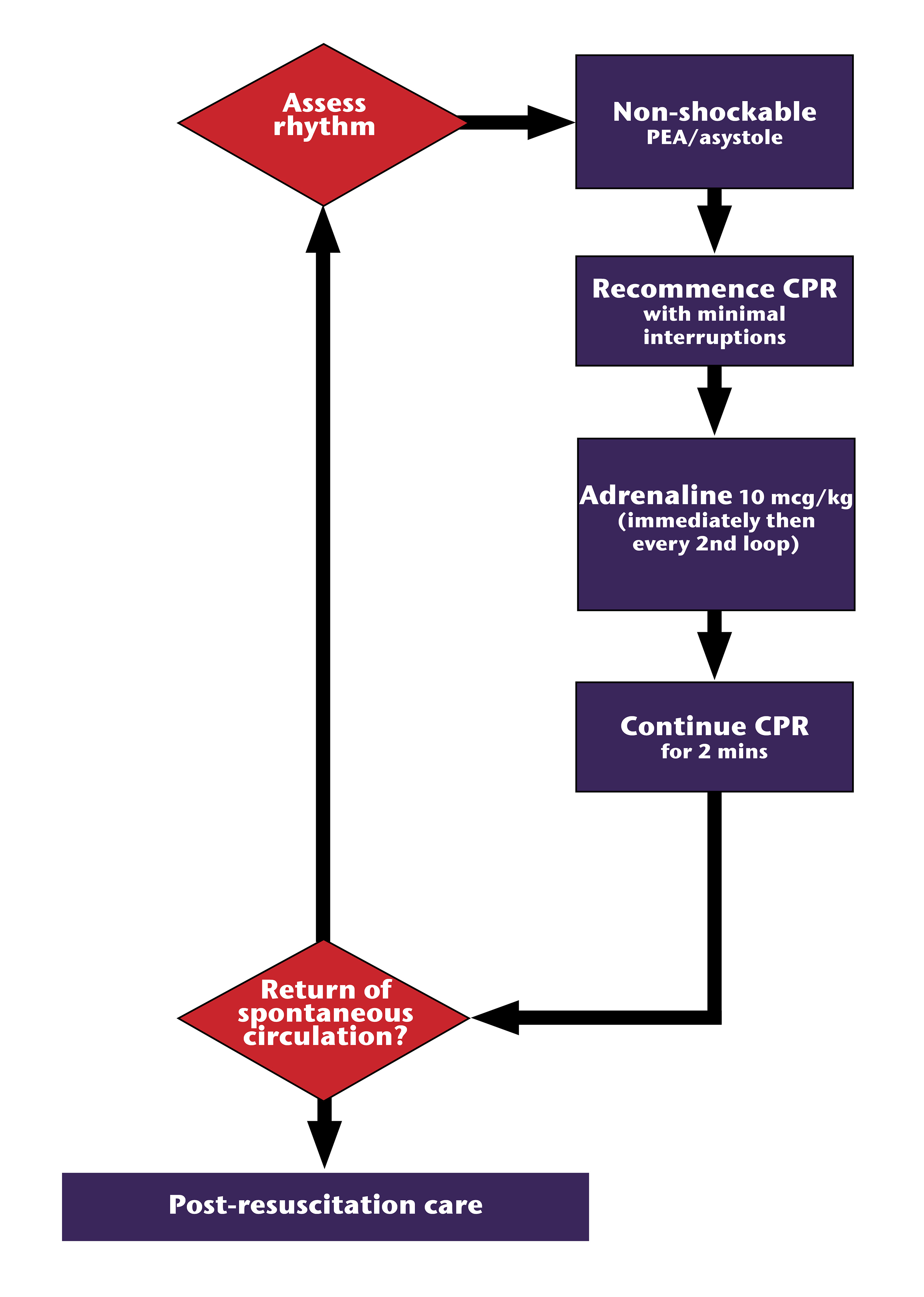 Figure 20.4 - Asystole & PEA management