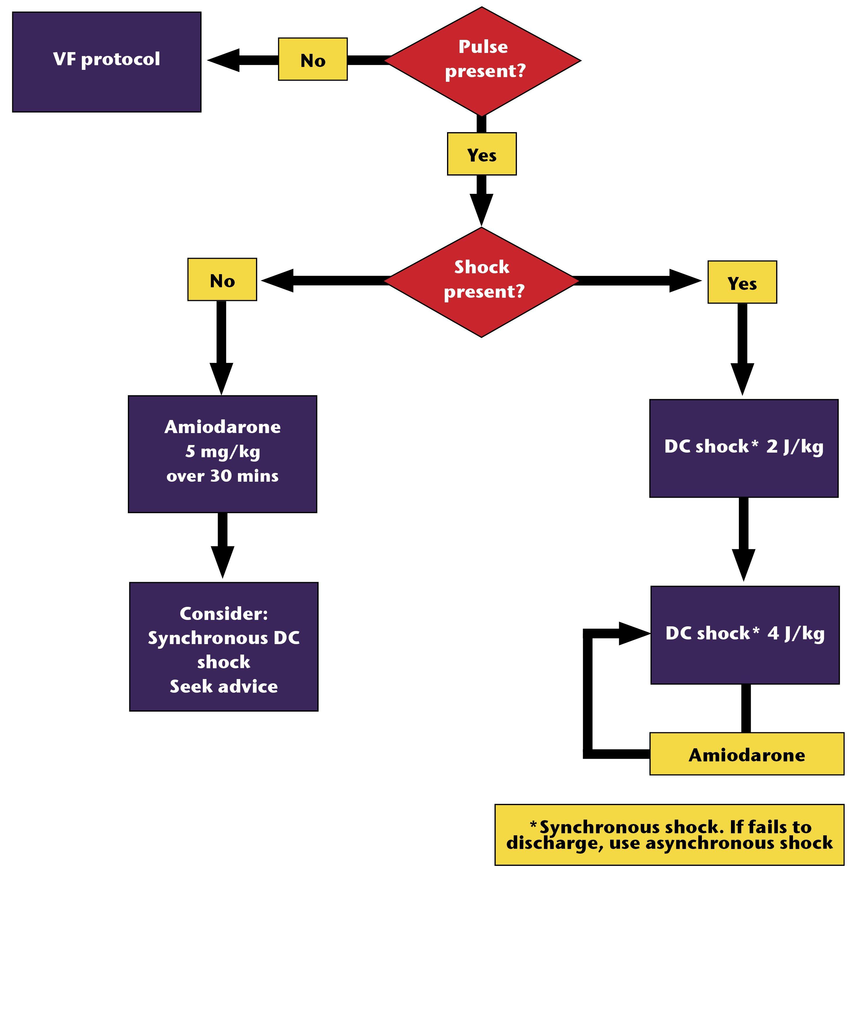Figure 7.5 - Management of VT